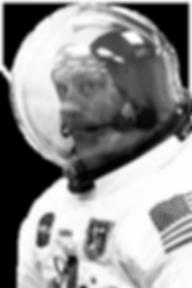 Staffordnaut_astronaut-only-e15252348905