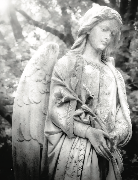 AngelEmblems.png