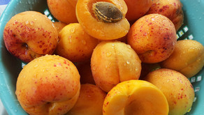 The Mighty Landed Nutritional Apricot