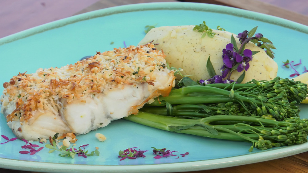 Barramundi fish dish cuisine meal food