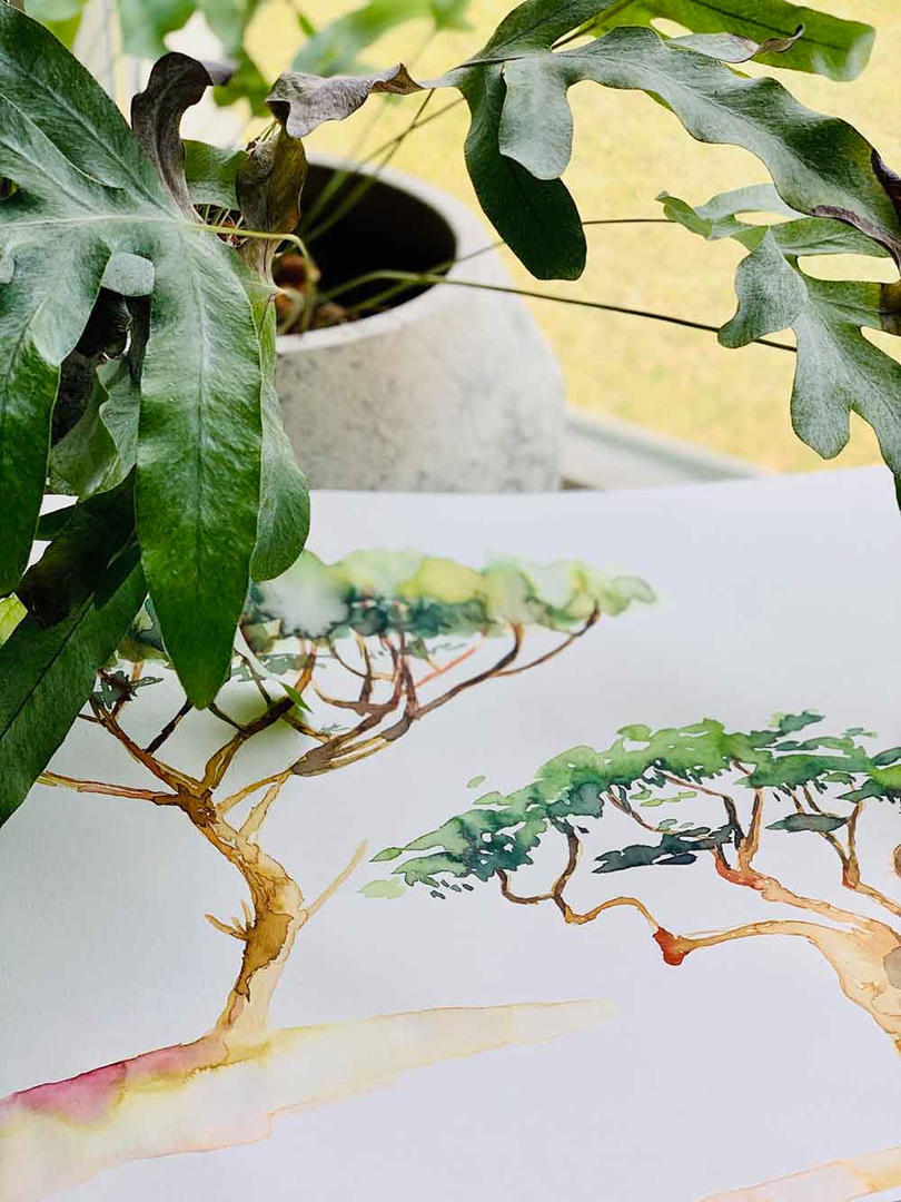 studio-projektow-ilustracje-malowane-wzo