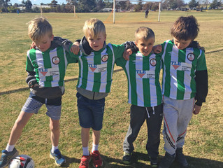 Under 8s help-out as ball-boys for C-Grade