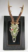 Decoupage Deer Skull