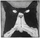 Art Print. Tom Cat