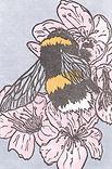 Bumblebee. Linocut