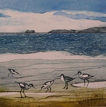 Avocets. Collagraph