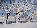 Print of watercolour. Snowy