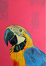 Original Art.  Mixed Media. Parrot Fashion.