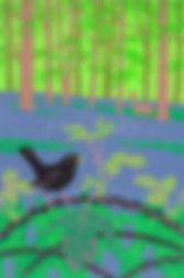 ART. ART. Blackbird, bramble, bluebells