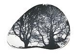 Porcelain Tree Plate