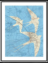Map Art. Swallows over Shropshire.jp