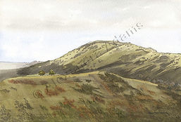 Original Art. Watercolour of Long Mynd