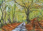 Autumn at Moor Hall. Print.  £40.  JC19