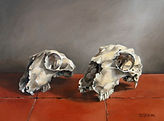 Sheep Skulls.   Oil on Canvas.