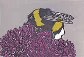 Bumble Bee print.