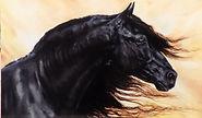 ART. OIL PAINTING. Spanish Stallion.