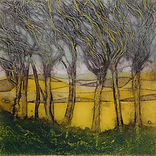 Stunning landscape. Collagraph