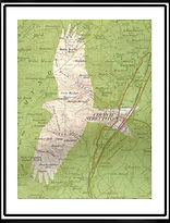 Map Art.  Red Kite Shropshire.jpg