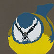 Art.  Linoprint.  Blue Tit