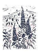 Art. Linocut. Foxgloves, Church Stretton