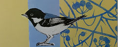 Coaltit collagraph