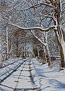 Print of Winter on Green Lane