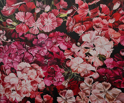 Original Art. Oil on canvas. Sweet William.
