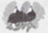 Guinea-Fowl Print