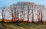 ART. Sun Aslant the Sycamores. Print.png