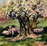 shropshire-lambs. Acrylic
