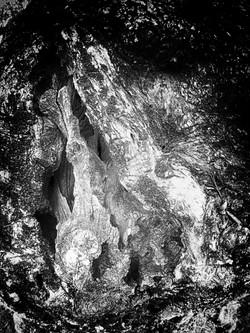 Dreaming Tree-II