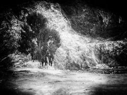 One Tree Quarry