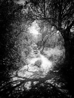 A Pathway Away