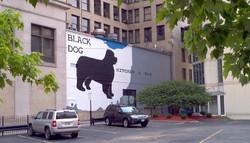 Black Dog Kitchen and Bar, 2012.jpg