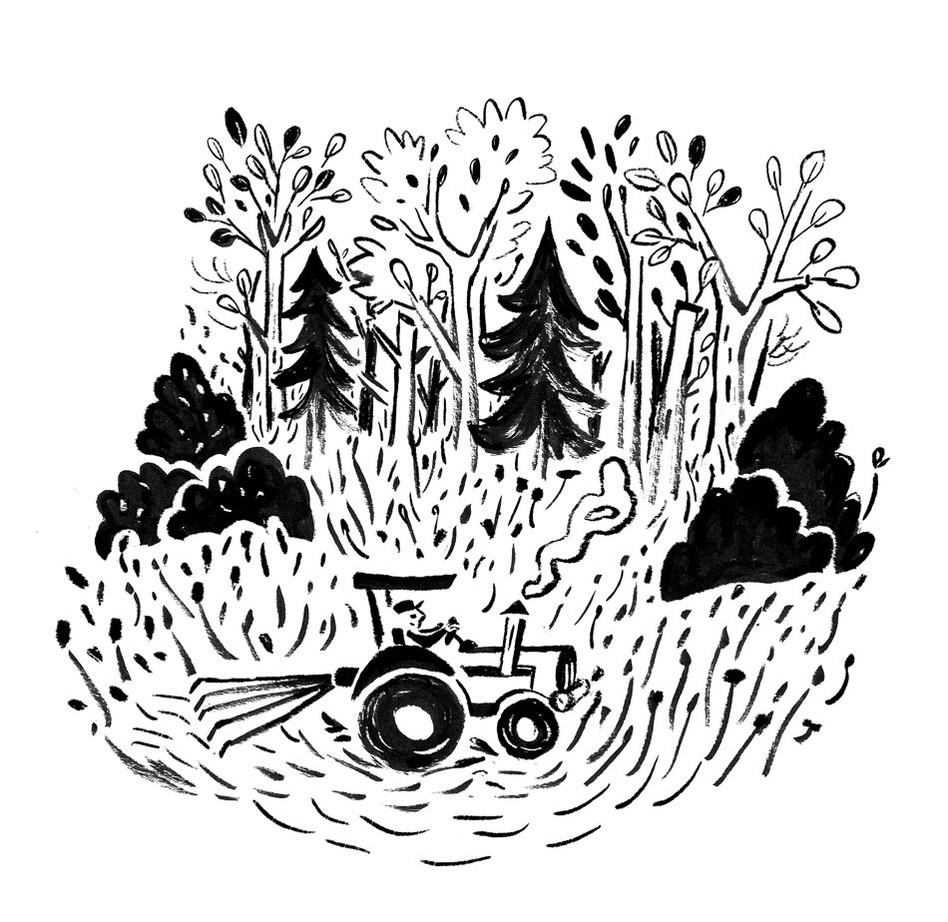 traktor-im-spaetsommer.jpg