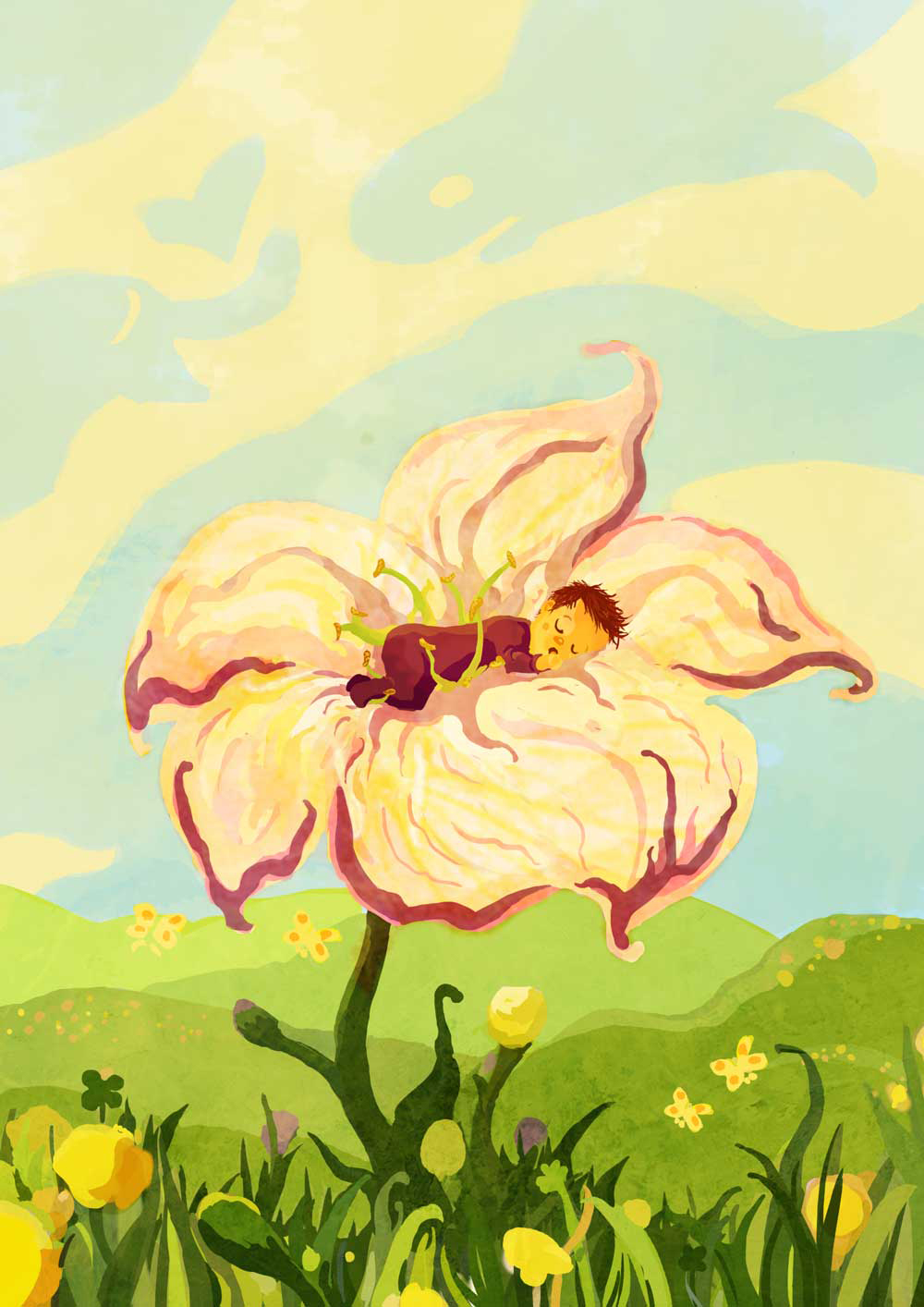 sleeping lilly illustration