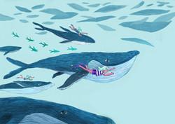 schwimmen mit Walen Illustration