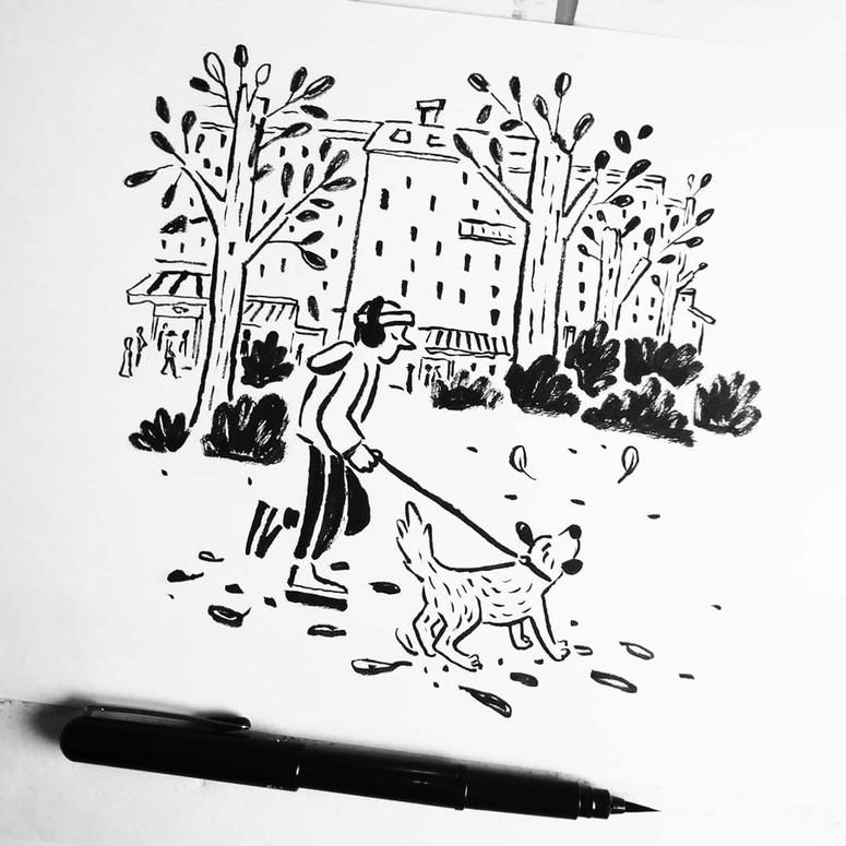dogwalker-anne-carlson-park-vienna.jpg
