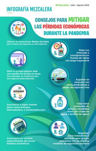 Consejos para mitigar las pérdidas económicas durante la Pandemia