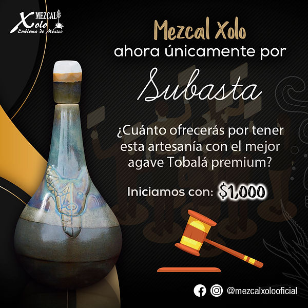 Subasta_xolo_2.jpg
