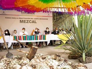 Codo a Codo: IP y Gobierno Mexiquense impulsarán comercialización de mezcal