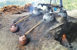 Historiadores revelan que el mezcal inició en Tlaxcala