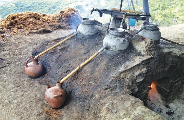 Al hacer los análisis químicos de escurrimientos en hornos cercanos al centro ceremonial de Xochitécatl- Cacaxtla, detectaron un material orgánico al que identificaron como piña de maguey quemada.