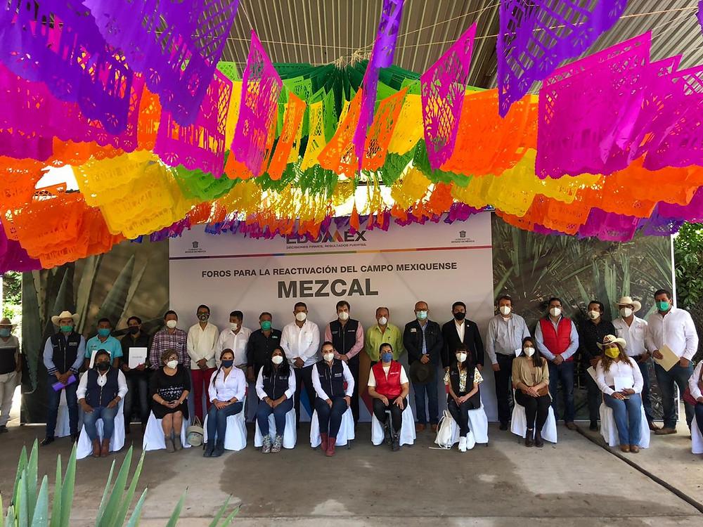 Proponen instaurar una Comisión Reguladora del Mezcal Mexiquense