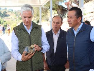 Del Mazo garantiza apoyo a productores de mezcal en 15 municipios mexiquenses