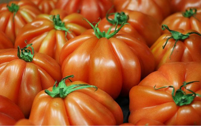 Tomaquets (imatge capçalera pagina).jpg