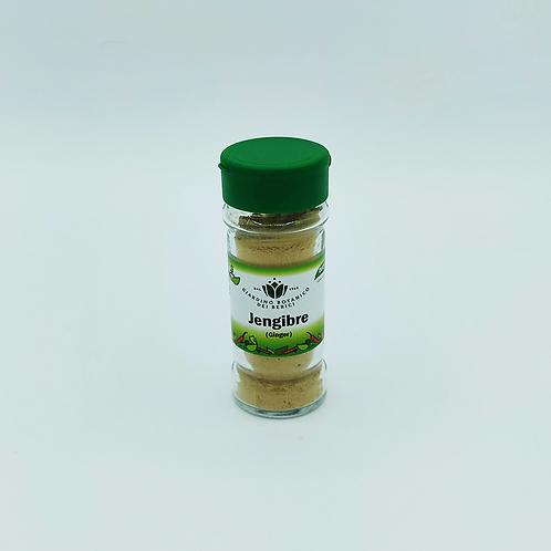 Condiment Gingebre en pols Biocop 30 g