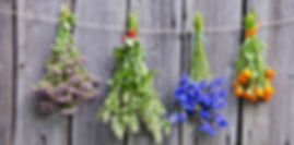 hierba-aromatica-2.jpg