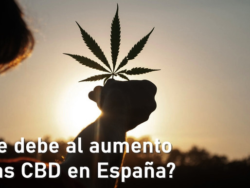 El auge del cannabis en España.