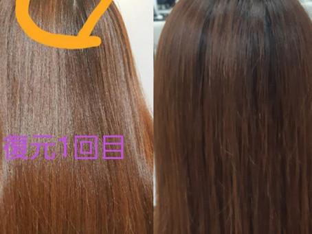 髪質改善 復元日記(つむじのわれ編)